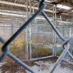 The detention cells were simply chain link fence enclosing a cement slab with a corrugated metal roof. The camp was originally used to hold troublesome refugees in the early 1990s and was repurposed in 2001 to hold detainees in support of the War on Terror.