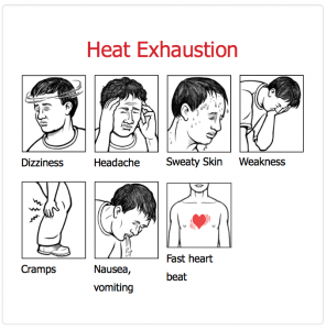 Do you have heat illness? Symptoms might include dizziness, headache, sweaty skin, weakness, cramps, nausea, vomiting and fast heart beat. Courtesy of OSHA.