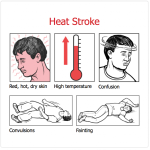 Do you have heat stroke? Symptoms may include irritated skin, high temperature, confusion, convulsions, or fainting. Courtesy of OSHA.