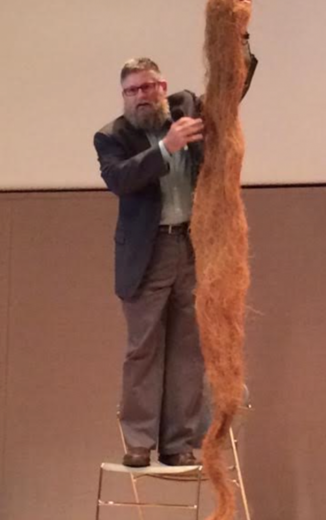 Perennial root systems as demonstrated by Jerry Glover. (Danielle Prieur/Medill News Service)