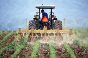 A farmer tilling his field. Photo courtesy of U.S. Government.