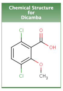 Chemical structure of Dicamba. Photo courtesy of the EPA.