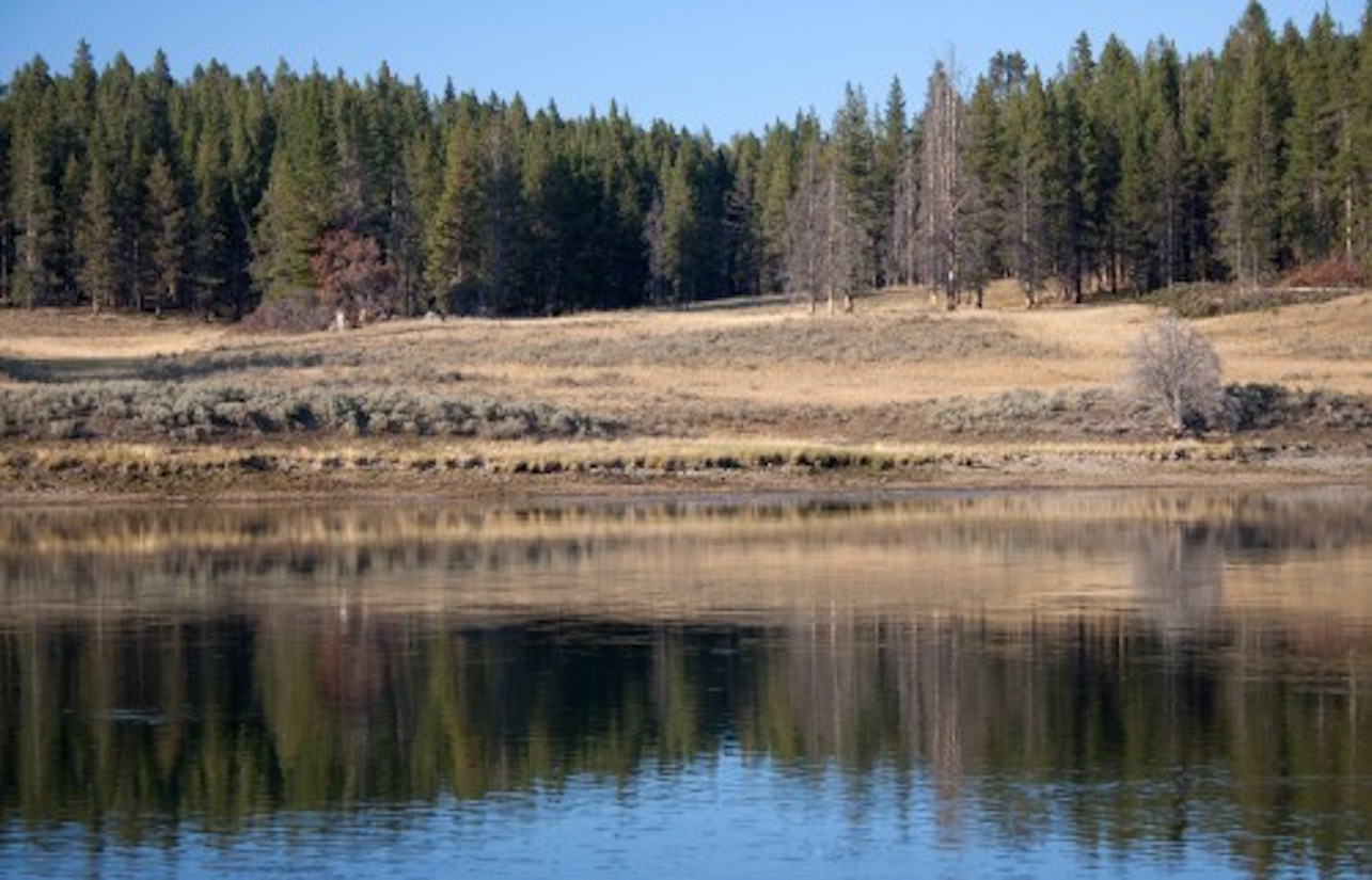 Public needed in fight against Yellowstone gold mining proposals