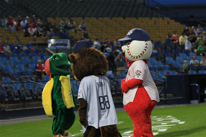 Mascot Meetings.