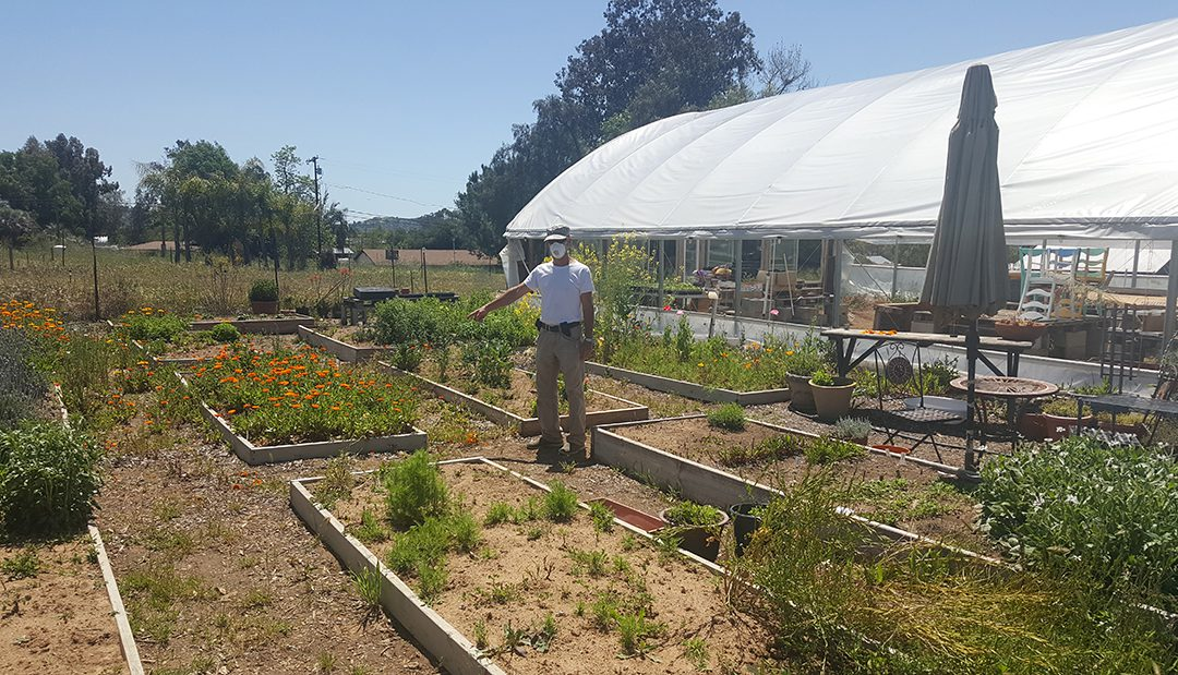 San Diego County Farmers See Big Drop In Flower Sales