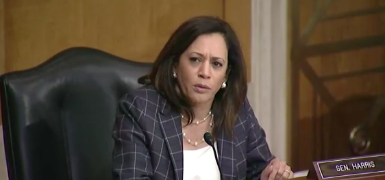 Harris, Hassan grill CBP chief on misspending claims and agents' role in protest enforcement