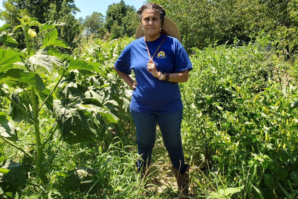 Black-owned Texas farms face roadblocks to COVID-19 relief funding