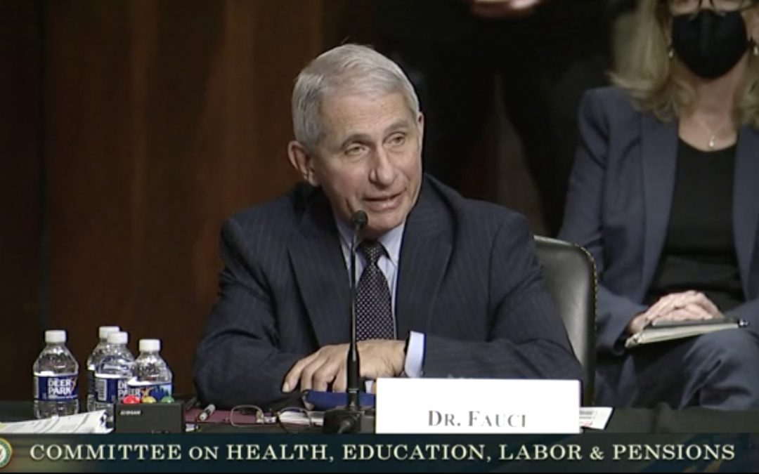 Health Care Experts Testify on Vaccines and Guidelines to Curb COVID-19